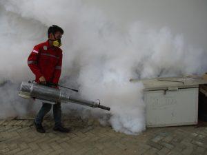 fogging-anti-kecoak