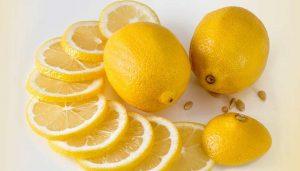 lemon-membasmi-kecoak