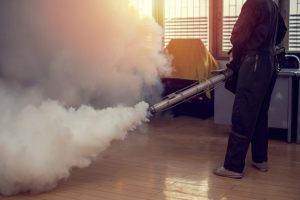 fogging-atau-pengasapan-nyamuk